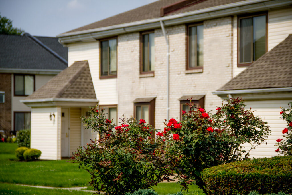 Exterior with roses